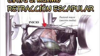 Retracción escapular - Protege tus hombros   Lesiones #1 (2/2)