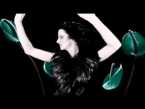 Afrikaanse musiek -Insisevus -JyDans Half Alleen 2009