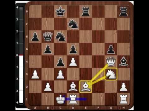 PREMIO A LA MEJOR PARTIDA DEL TORNEO: Kasparov vs Radjabov (Linares, 2003) // Defensa Francesa