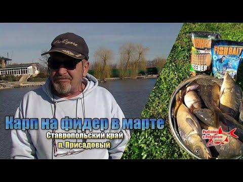 Карп на фидер в марте. Ставропольский край п.Присадовый. FishBait в деле.