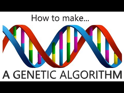 Programming | Genetic Algorithm Introduction with Strings