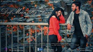 Dil Mein Ho Tum || Full Video || Sonu Kakkar || Why Cheat India || ZKF || HIT FILM