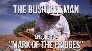 "Fridge Hive Inspections - Episode 127: ""Mark of the Fridge"""