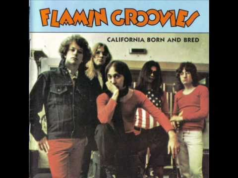 Flamin' Groovies - Shakin' all over