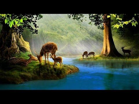 प्यासा हिरन जैसे ढूँढ़े है जल को - with Lyrics (Hindi)| Pyasa Hiran - Madhur Geet Hymns