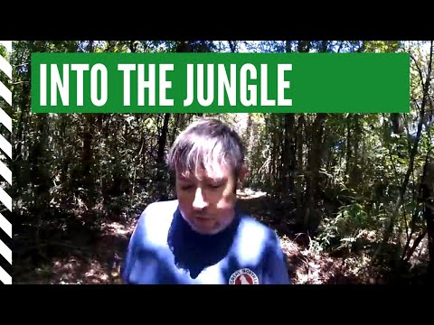 SOUTH AMERICAN JUNGLE HIKE - INTO THE RAIN FORREST