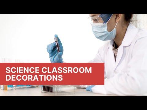 31 Fun Science Classroom Decorations Quick Science Classroom Tour