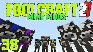FoolCraft 2 Modded Minecraft 38 Here Come The Mini Moos