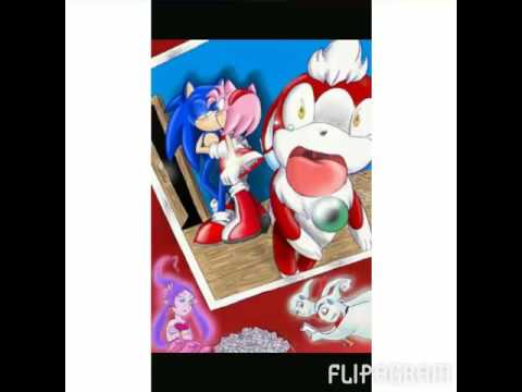 Sonic the werehog and amy