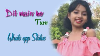 dil-main-ho-tum-cover-zaara-sk-baby-girl-whatsapp-status