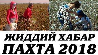 ПАХТА 2018 ЖИДДИЙ ХАБАР.