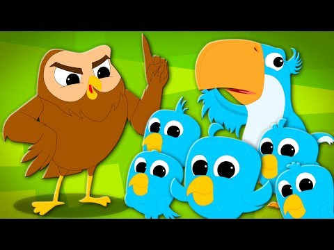 Five Little Birds | Birds Song | Nursery Rhymers Songs | Rhymes For Children