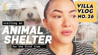 Visiting an Animal Shelter for the First Time... | Villa Vlog No. 26 | soothingsista