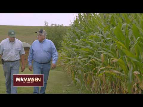 Norlin Mommsen for Iowa House - HD 97