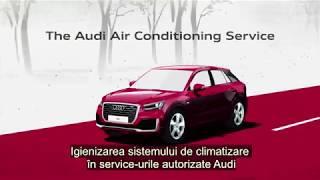 Filtrul antialergenic Audi