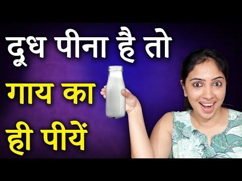 देसी गाय का दूध  हैं अमृत समान ! Gaay ke Dooodh Ke Fayde | Benefits Of Cow Milk | Life Care