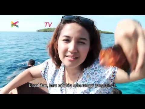 Explore Indonesia - Sail Tomini