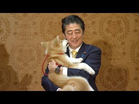 Japan's Abe oversees