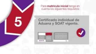 Requisitos para realizar la matrícula inicial de su vehículo