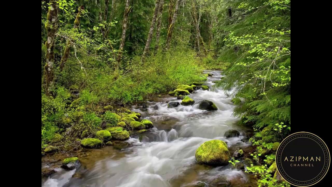 87 Gambar Air Sungai Mengalir Paling Hist