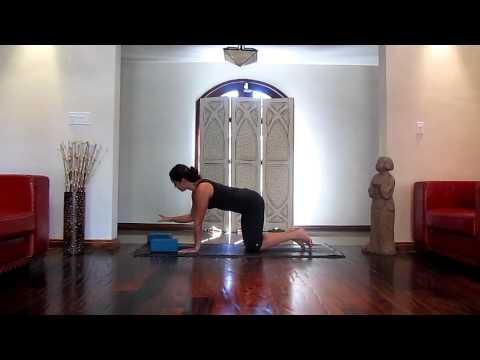 10 chaturanga dandasana quotes  yoga poses
