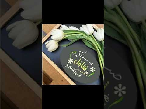 e96ff9666e6f9 اسعد الله مسائكم و صباحكم بكل خير - YouTube