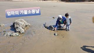[#1 엄마의 가을소풍날] 태안사목해수욕장 : 가족여행…