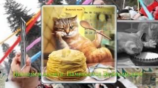 Видео поздравление от смешных кошек с масленицей, Это - Масленица, Чудо - Масленица