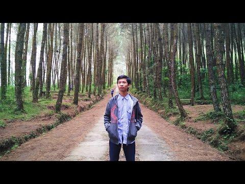 Hutan Pinus Kragilan (Top Selfie) Magelang, Jawa Tengah