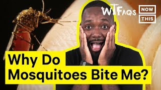 Why Do Mosquitoes Bite Some People More Than Others? | What The FAQs | NowThis