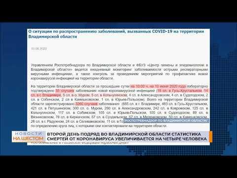 Второй день подряд во Владимирской области статистика смертей от коронавируса увеличивается