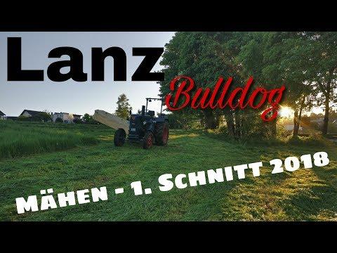 Lanz Bulldog Mähen - 1. Schnitt 2018 [D6516]