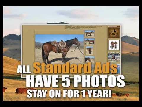 Ranchworldads Com Online Ranch Classifieds Youtube