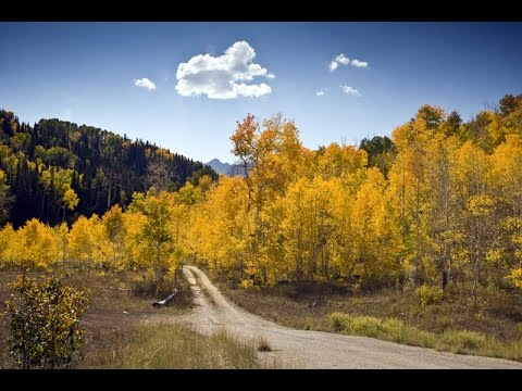 Mount Nebo Scenic Byway - Fall Colors / Grotto Falls / Devils Kitchen