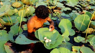 Primitive Survival | Find Wild Bird Egg in Lotus Pond and Cooking in Lotus Leaf in Village
