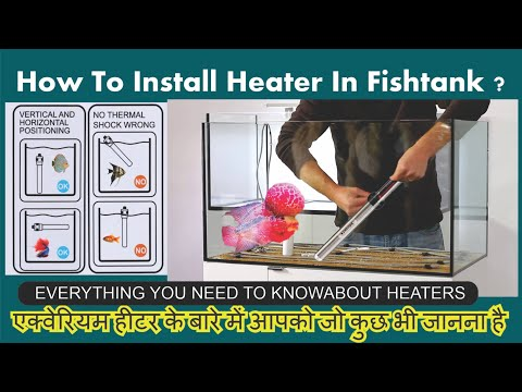Aquarium Heaters All You Need To Know About Fishtank Heaters Complete Guide