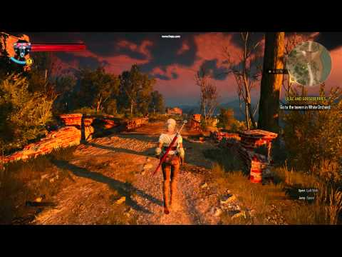 The Witcher 3: Wild Hunt Play as Ciri PC Debug Console/Open World/Console Command: Play as Ciri in the Witcher 3. Replace Geralt. Debug Console by skomski  Link: http://www.nexusmods.com/witcher3/mods/28/?tab=1&navtag=http%3A%2F%2Fwww.nexusmods.com%2Fwitcher3%2Fajax%2Fmoddescription%2F%3Fid%3D28%26preview%3D&pUp=1
