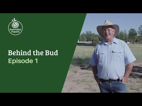 Behind the Bud: Episode 1   Australian Organic