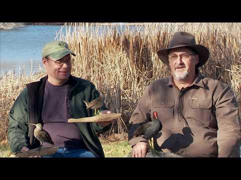 Oklahoma's Public Land H.I.P. Quest (harvest Information Permit)
