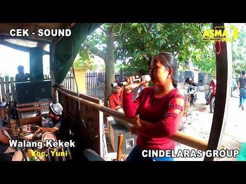 WALANG KEKEK VOC. YUNI | CEK SOUND TARLING DANGDUT CINDELARAS 2018