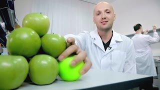 ГМО: технологии создания и применение. Трейлер(У нас новые курсы на Coursera.org! Записывайтесь скорее: https://www.coursera.org/learn/gmo Знаете, как скрестить мышь с медузой?..., 2016-09-07T11:41:38.000Z)