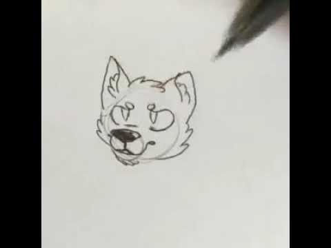 How to draw a furry wolf head? Simple!