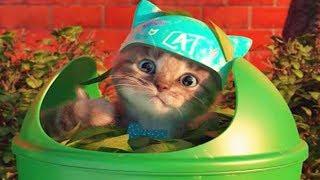 Play Cute Pet Kitten Care Kids Games - My Favorite Little Kitten Preschool Learning Animals Gameplay
