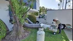 Excellence Pest & Termites | Los Angeles, CA | Pest Control