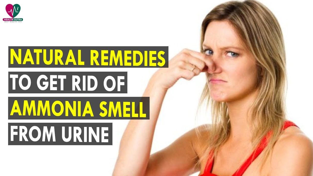 Natural Remedies To Get Rid Of Ammonia Smell From Urine ...