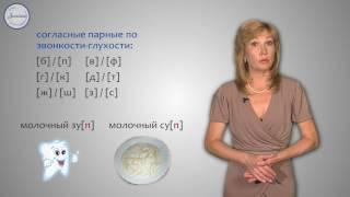 Русский 2 Чередование звуков в корнях слов, которое мы не видим на письме