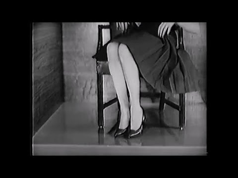 1962 Lady Remington Electric Shaver