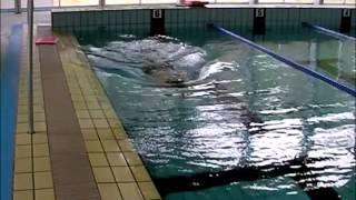 日本水泳連盟上級コーチ資格取得者です。 タダでおぼえるスイミングスク...
