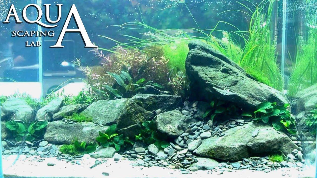 how to clean aquarium rocks