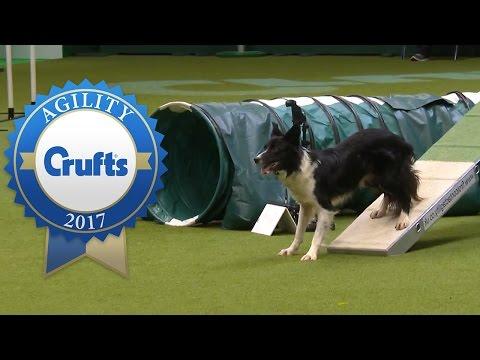 Agility Championship Final | Crufts 2017